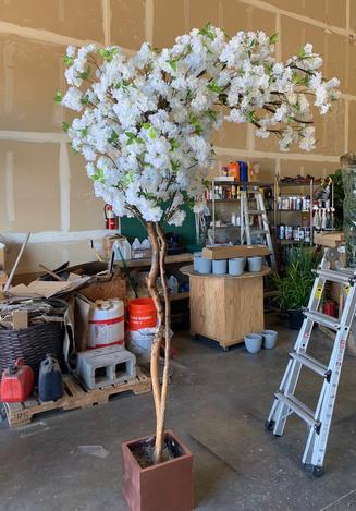 Custom white cherry blossom archway