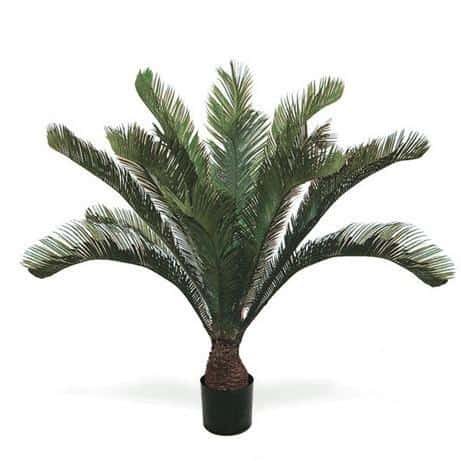 Artificial Cycas Palm