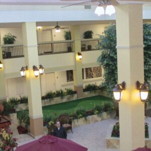 Artificial Plant Landscaping for hospitality Suites and Senior Living