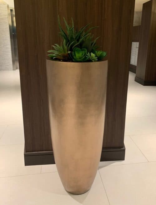 Succulents in tall planter