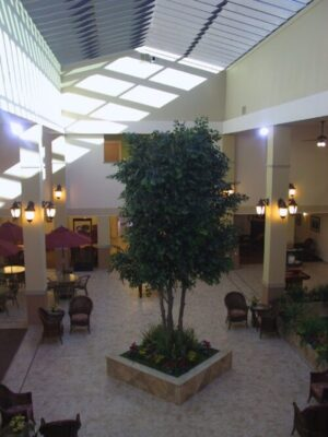 Large commercial artificial ficus tree