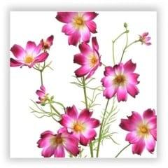 cosmos silk flower