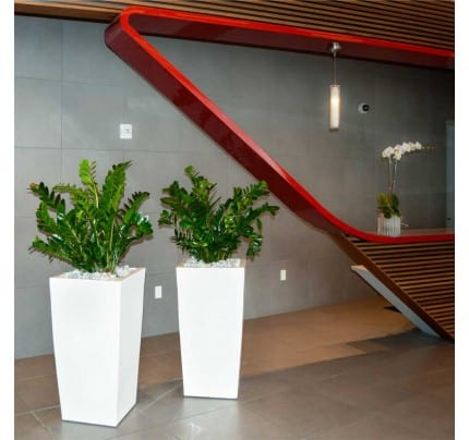 Tall tapered fiberglass planters