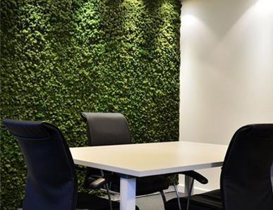 Indoor Artificial boxwood wall