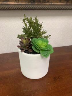 artificial succulents in 6inch bowl
