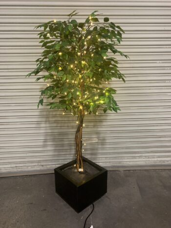 Artificial lighted ficus tree