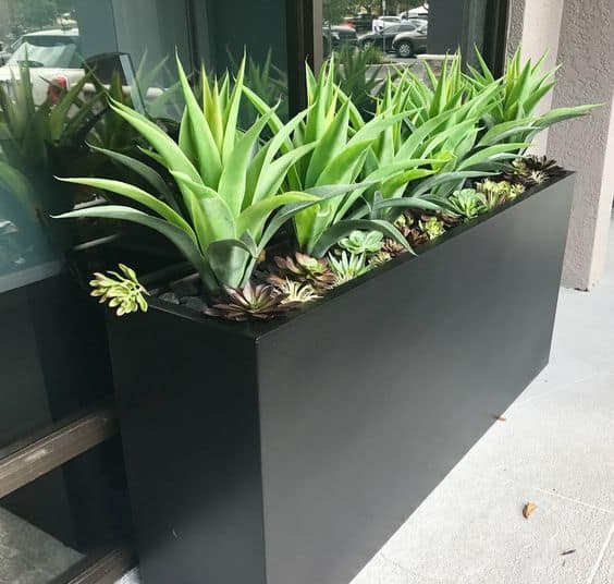 outdoor artificial agave with succulent