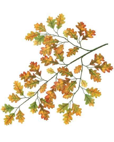 Acorn Leaf Spray