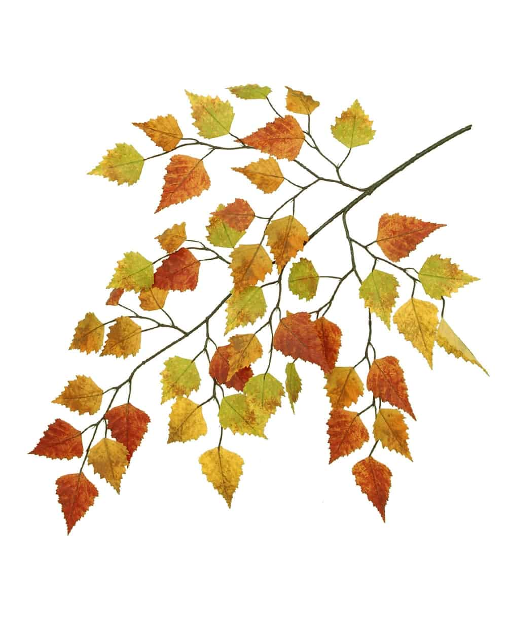 Fall Birch Spray